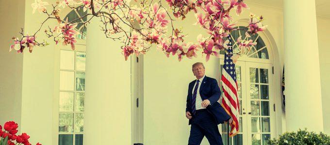 """Luận bàn về """"Nhân-Trí-Dũng"""" của Ngài Trump"""