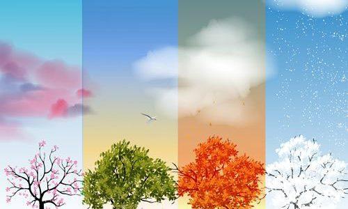 Hãy học bài học về các mùa